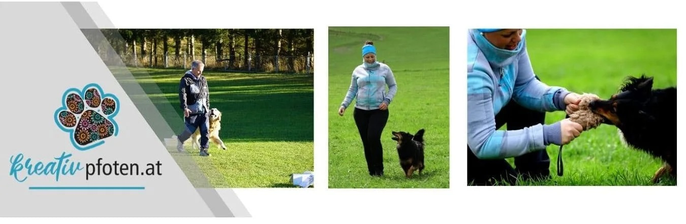 Kreativpfoten-Hundetraining-SarahLeyrer2.jpg